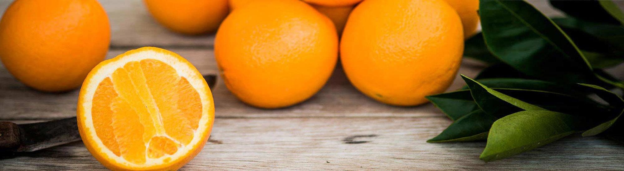 واردات و صادرات میوه